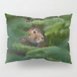 Jackrabbit Pillow Sham