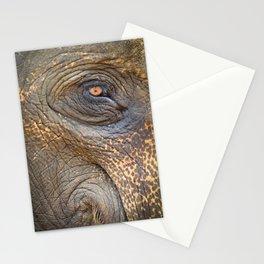 Close-up Elephant eye Stationery Cards