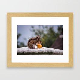Fruit Thief Framed Art Print