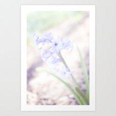 Hyacinth rush Art Print