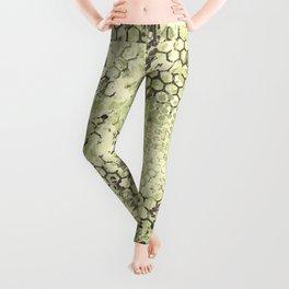 Sage Green Odyssey Leggings
