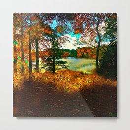 Trees and Shadows in New England Metal Print
