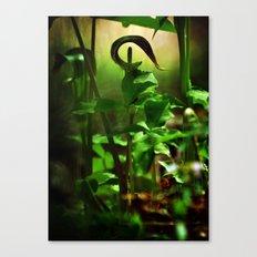Opening and Upward Canvas Print