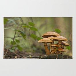 Gimnopilus mushrooms family Rug