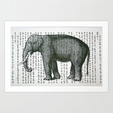 Elephant on Hindi Art Print