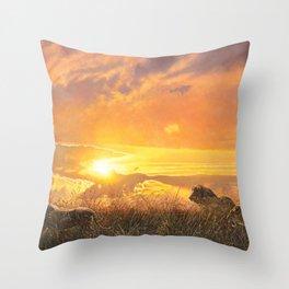Sunset by Alan M Hunt Throw Pillow
