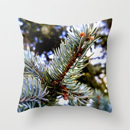 Blue Spruce Spring Growth 1 Throw Pillow