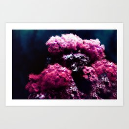 The Sea Anemone Floral Bouquet Art Print