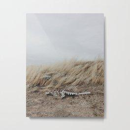 Winded Skeleton Metal Print