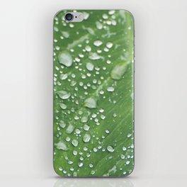 Misty Leaf iPhone Skin