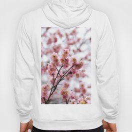 The First Bloom Hoody