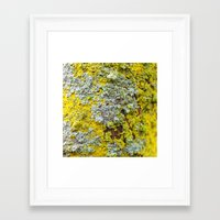 moss Framed Art Prints featuring Moss! by eddiek3