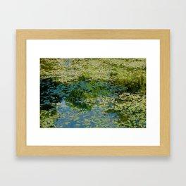 Pond Impression Framed Art Print
