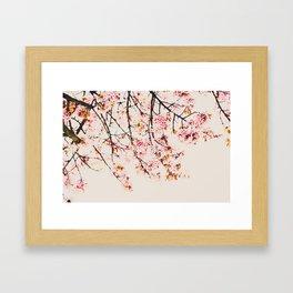 Pink Spring Blooms Nature Print Framed Art Print
