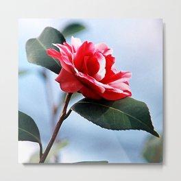 Red White Flower #2 Metal Print