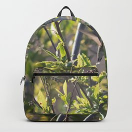 Hummingbird in the Bushes Backpack