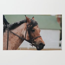 Ladybug the Red Roan Pony Rug