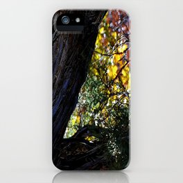 Above Doc Hollidays Grave iPhone Case