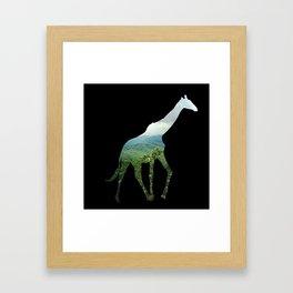 Giraffe in the Smokies  Framed Art Print