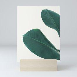Rubber Fig Leaves I Mini Art Print