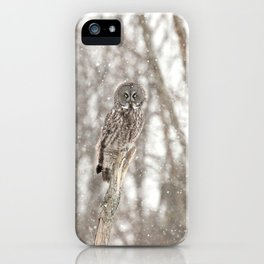 Great gray on a snowy day iPhone Case