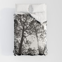 trees, black and white -  Forest landscape photography Comforters