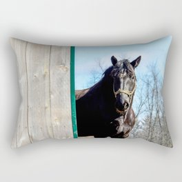 Percheron Horse by Teresa Thompson Rectangular Pillow