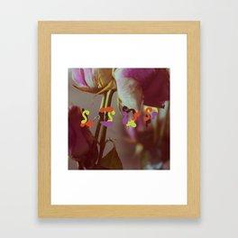 Loop Framed Art Print