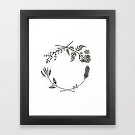 Yarrow, Sage, Lavender, Thyme Framed Art Print