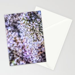 Grand Daddy Purple Forum Cut Cookies Strain Stationery Cards