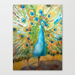 Peacock Outstretched Canvas Print