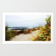 Coastal Wildflowers  Art Print