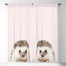 Baby Hedgehog With Pink Background, Baby Animals Art Print By Synplus Blackout Curtain