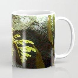 Leafy Sea Dragon with Rocks Coffee Mug