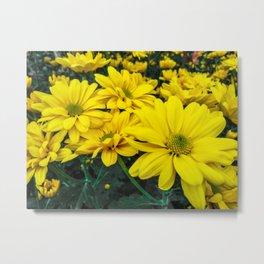 Bright Yellow Flowers Metal Print