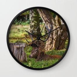 The Stag. Wall Clock