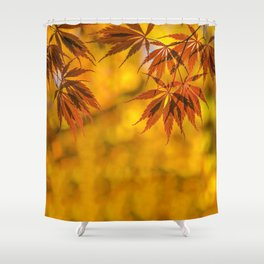 Maple in the gold fall Shower Curtain