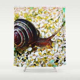 Mellow Mollusk | Painting Shower Curtain