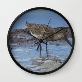 Looking for food Wall Clock