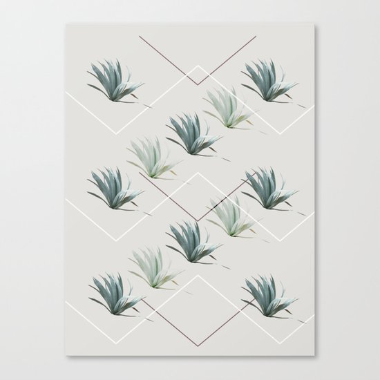 Succulents with Chevrons Canvas Print