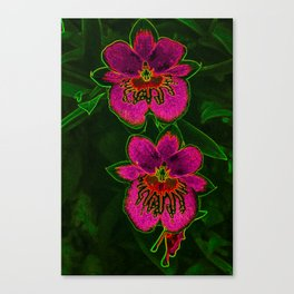 Hot Pink Tropic Orchids Canvas Print