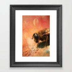 Bokeh Bee Framed Art Print