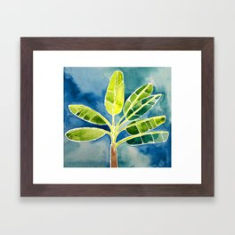 Banana Tree Framed Art Print