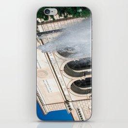 Detroit Institute of Arts iPhone Skin