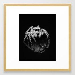 Spider Reflection Framed Art Print