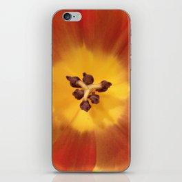 Sunny flower center iPhone Skin