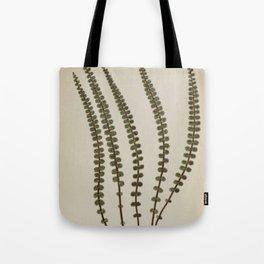 Derbyshire Fern Tote Bag