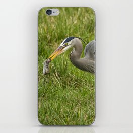 The Heron's Catch iPhone Skin