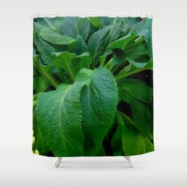 GREEN COMFREY LEAVES Shower Curtain