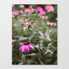 Buzzy Blooms Canvas Print